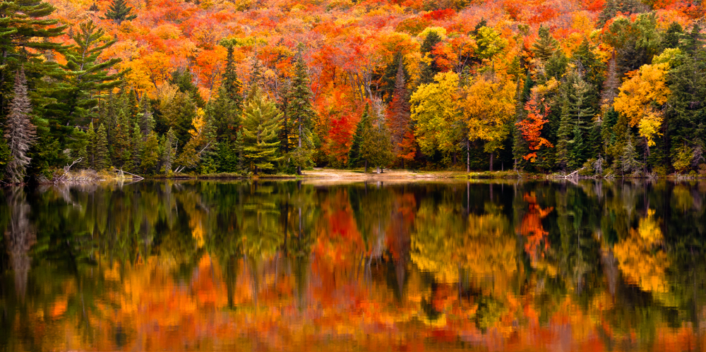Canada Open for Fall